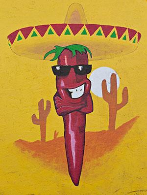 cactus logo with saguaros