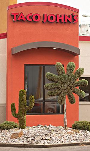 topiary cactus