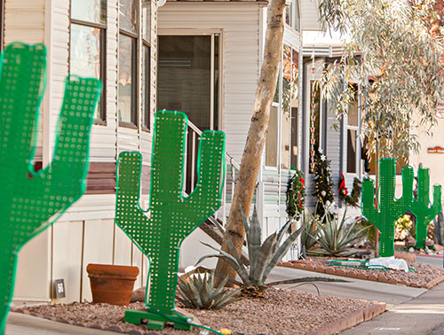 cactus lights in trailer park
