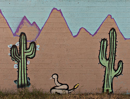 cactus mural on wall