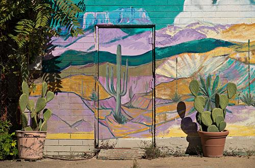 cactus theme mural