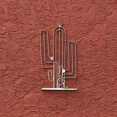 cactus themed decor